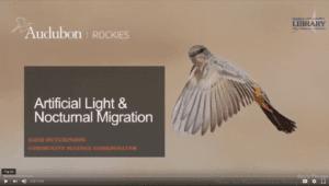 Audubon presentation: Light and Migration