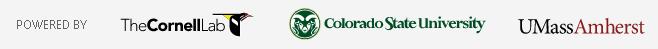 BirdCast logos