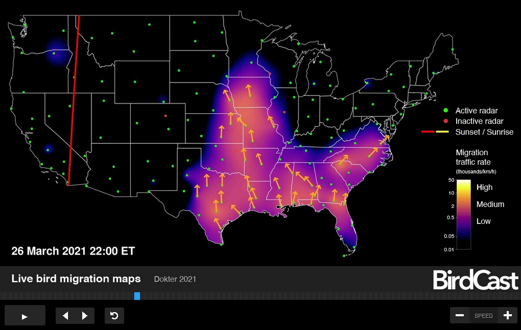 Live Radar-based Map